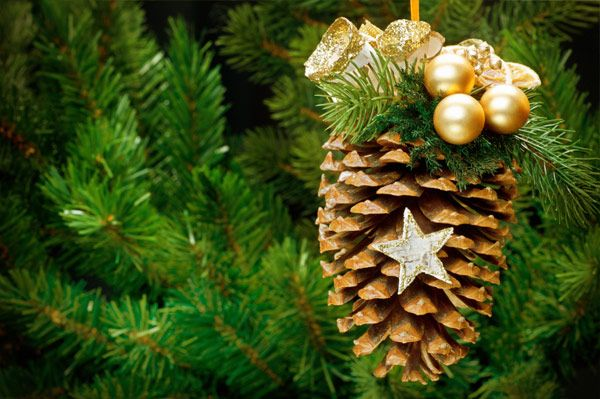 Pinecone christmas ornament girl scout xmas tree pinterest for Pine cone ornaments