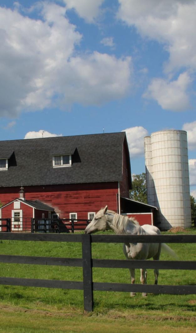 barn horse silo farms barns pinterest