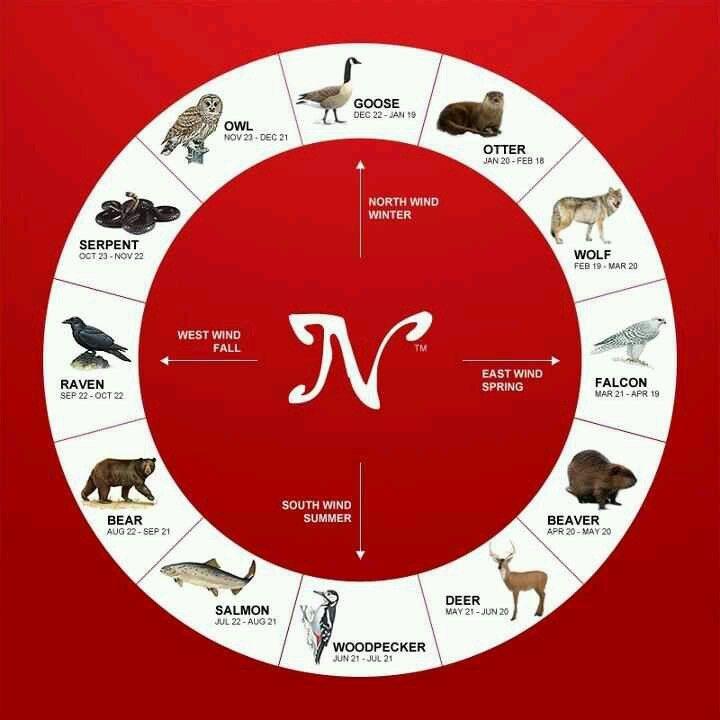 Native American Animal Spirit Astrology