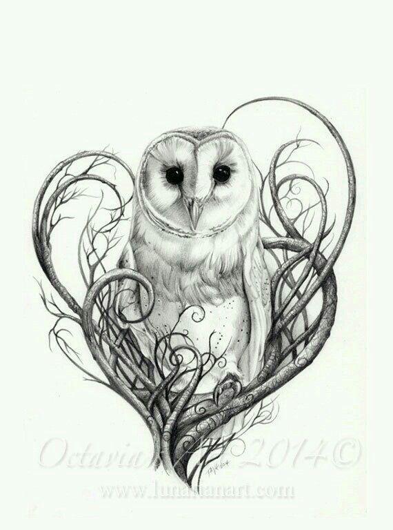 Realistic barn owl tattoo