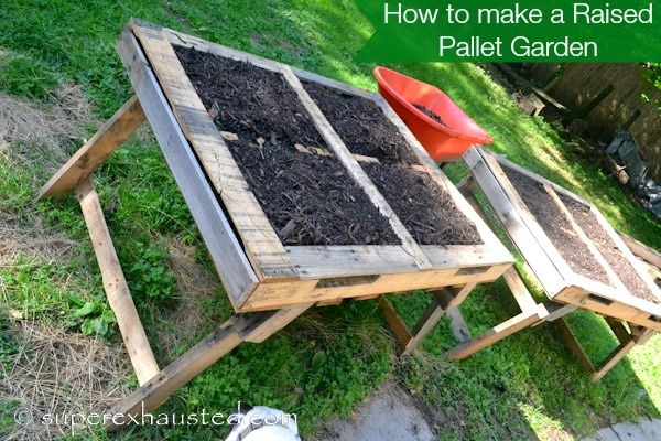 How to make a raised pallet garden beds suzy homemaker for How to make garden beds from pallets