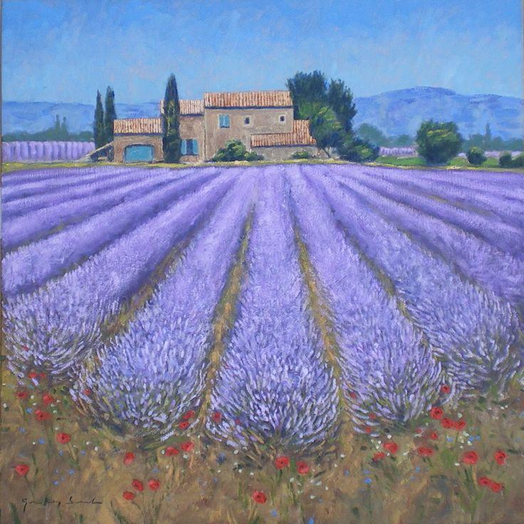 Lavender field alpes de haute provence provence for Haute provence