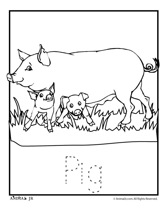 pontipines coloring pages - photo#15