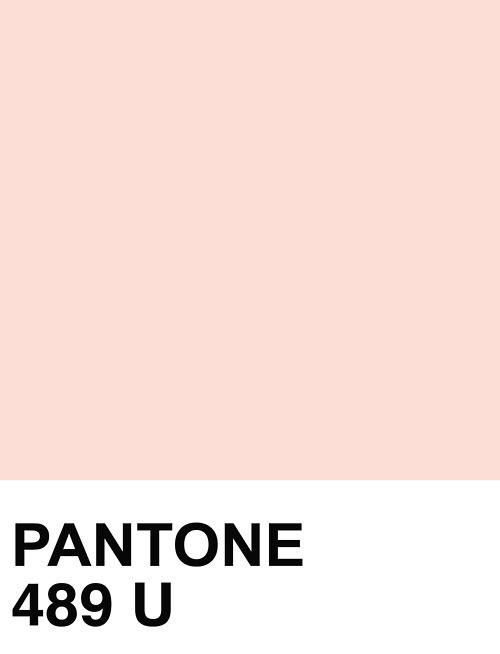 blush - pantone 489