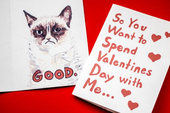 valentines day cat funny