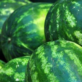 watermelon Soup | Food - Soups! Stews! Chili! | Pinterest
