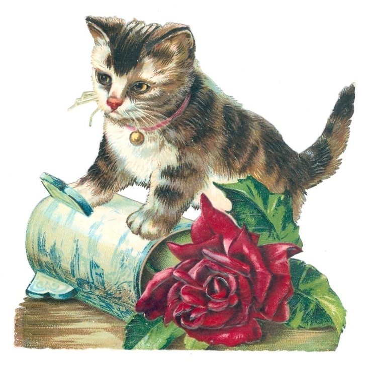 Cat With A Rose Vase