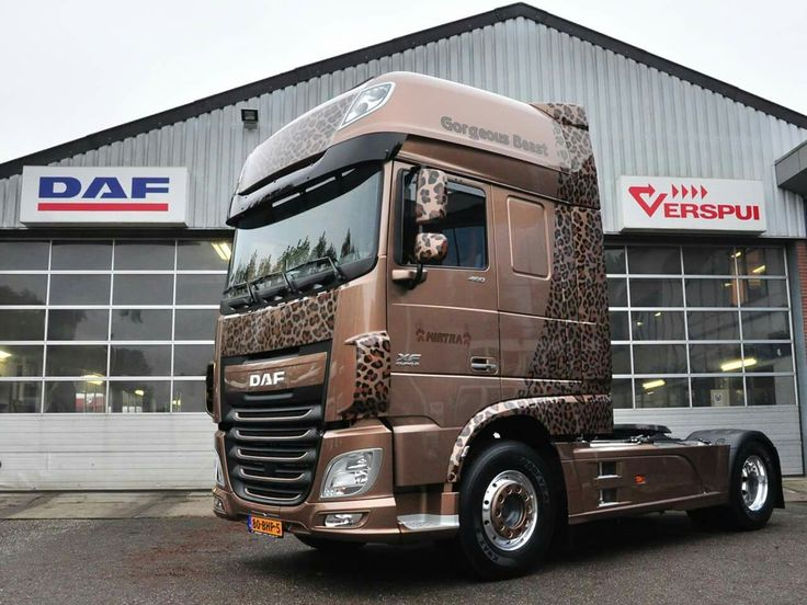 1000 images about daf on pinterest trucks semi. Black Bedroom Furniture Sets. Home Design Ideas