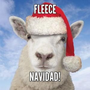 Holiday Humor - Fleece Navidad - Christmas sheep