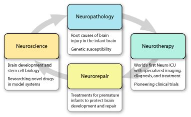 ... by What Not To Eat When Pregnant on Infant Brain Development | Pi