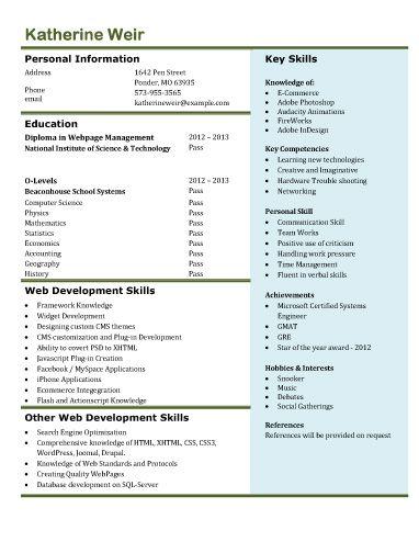 Front end web developer resume example