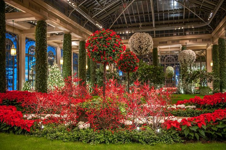 Longwood Gardens At Christmas 2013 Where I Have Traveled Pinterest