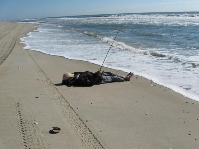 Cape lookout fishing bing images for Point lookout fishing