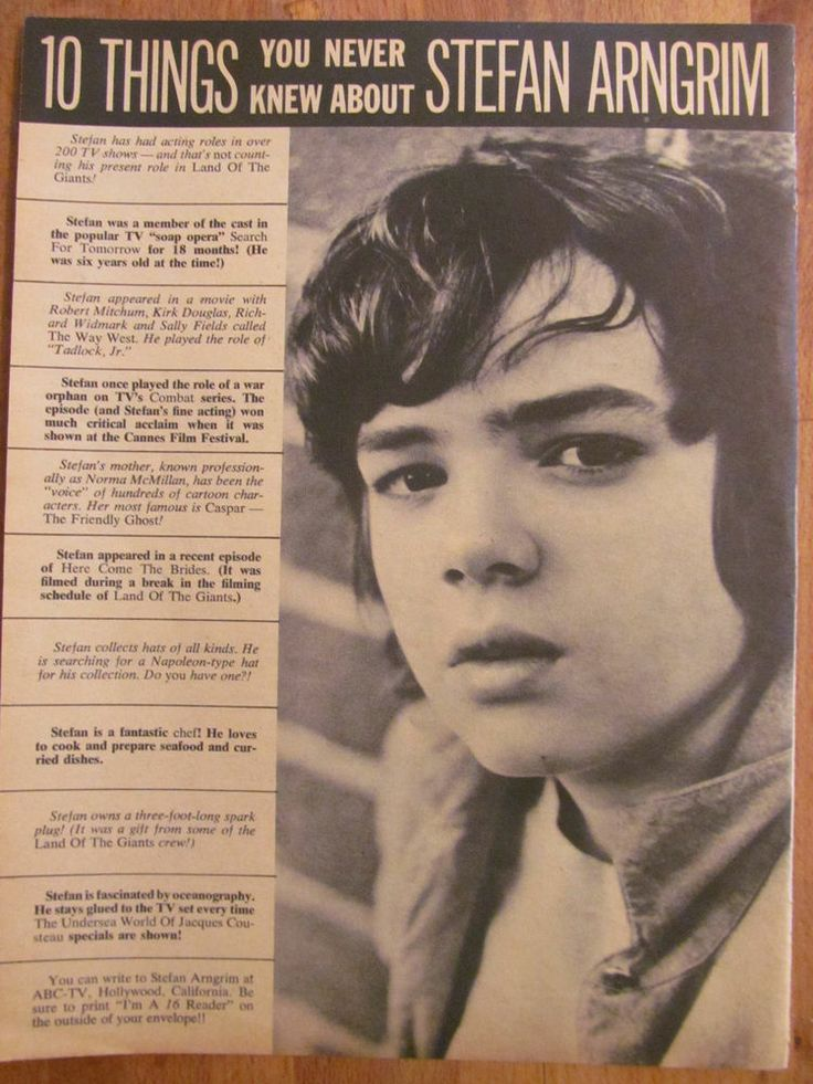 Stefan Arngrim, Land of the Giants, Full Page Vintage Clipping