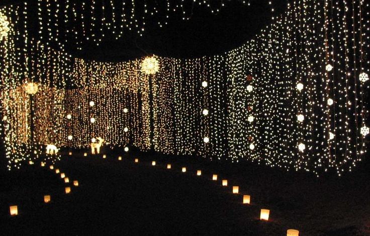 Huntsville Botanical Gardens Galaxy Of Lights Galaxy Of Light Icicle Forest Seasonal Exhibits