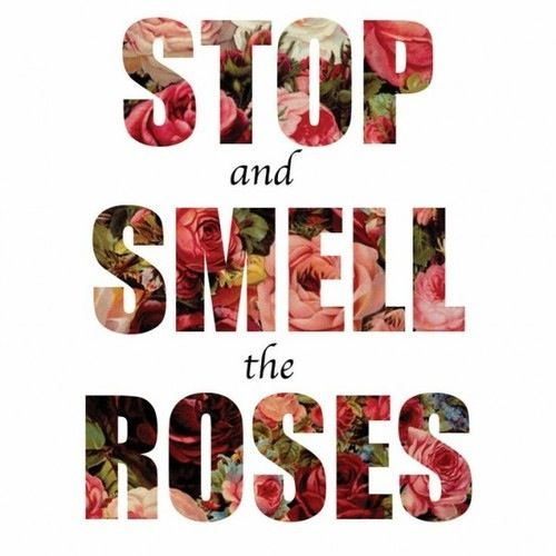 """stop and smell the roses """"stop and smell the roses"""" may be a cliché, but new research suggests it's sound advice for finding satisfaction in life a forthcoming study in the journal of personality and individual differences suggests that appreciating the meaningful things and people in our lives may play an even ."""