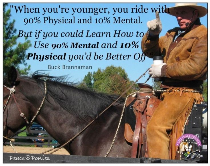 Buck Brannaman - The Warmblood Horse www.thewarmbloodhorse.com