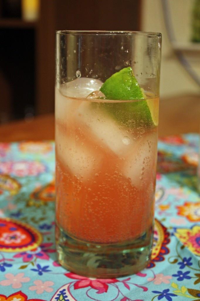 Blood Orange Gin & Tonics