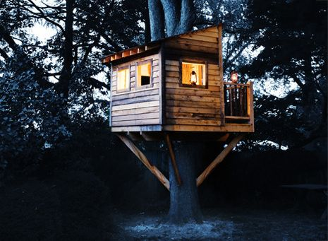 How to build a backyard tree house for How to build a simple tree fort