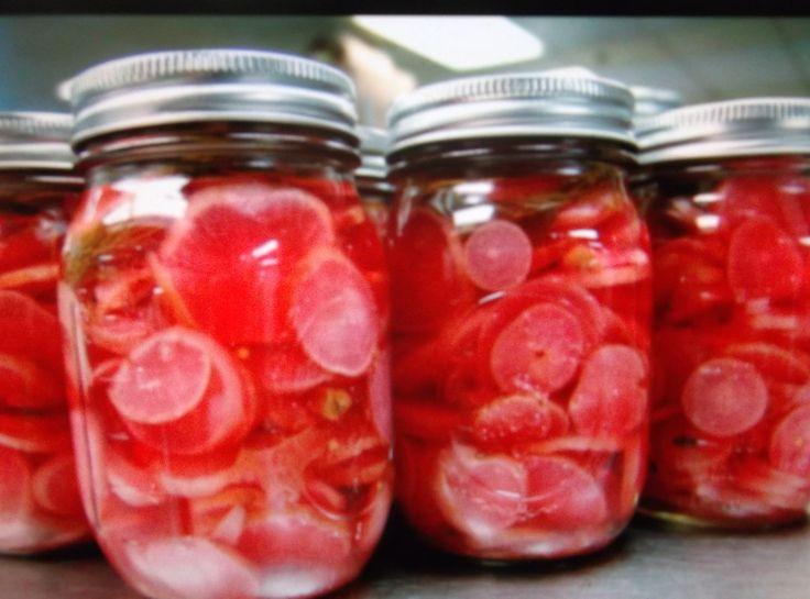 PICKLED RADISHES | Pickles | Pinterest