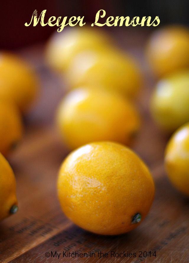 Meyer Lemon Hazelnut Tart | Oh My! Pie! | Pinterest
