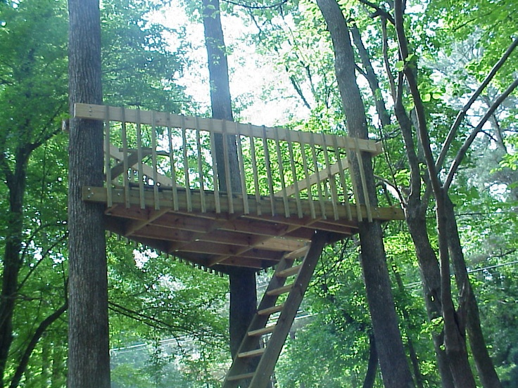 easy treehouse base with three trees tree houses pinterest