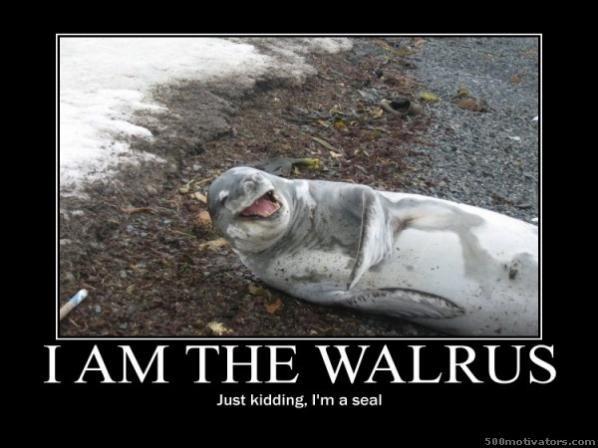 am the walrus - just kidding I'm a sealI'm The Walrus Lyrics