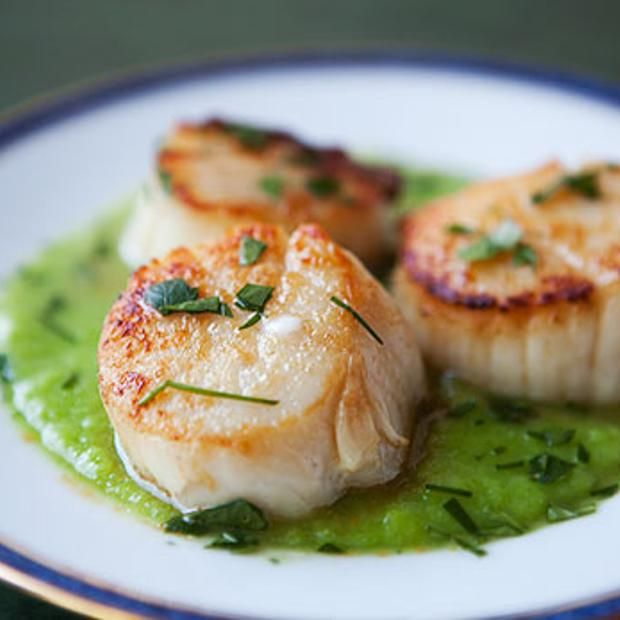 Sea Scallops With Asparagus Sauce | Food Porn | Pinterest