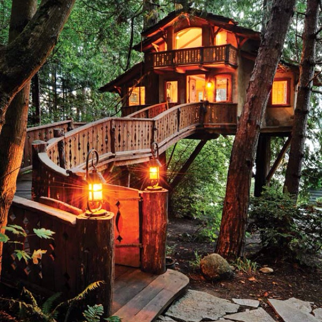 Worlds Coolest Tree House Decor Pinterest