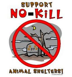 kill shelters: stop the cruelty of killing animals and think what if i were them! help me get the president to outlaw kill shelters!