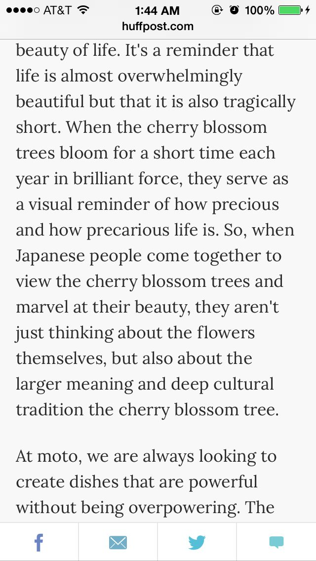 Cherry blossom tree meaning life pinterest What is the meaning of tree