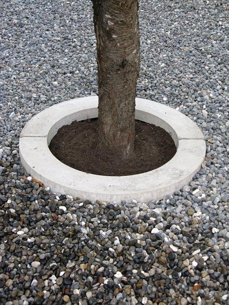 Beton baumring tuin pinterest for Pinterest beton