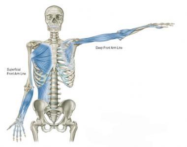 Anatomy trains com