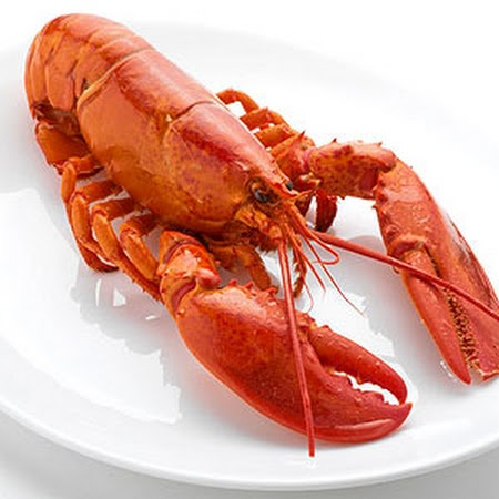 Boiled Lobster | Seafood Main | Pinterest