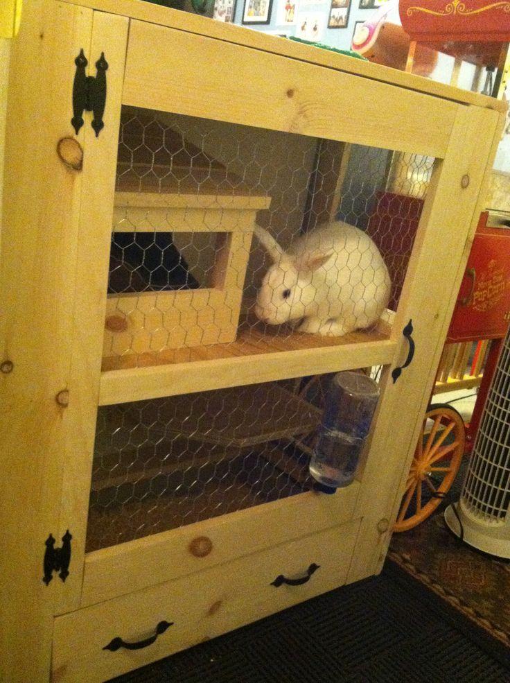 Indoor rabbit cage i 39 m feeling crafty pinterest for Build indoor rabbit cage
