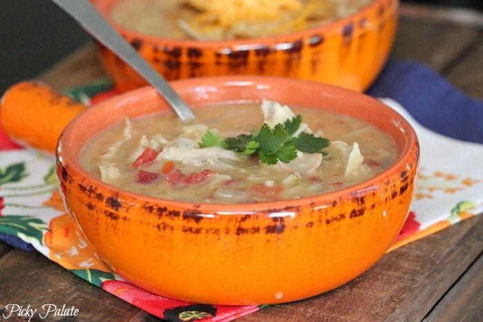 Slow Cooker Chicken Enchilada Soup. I used salsa verde instead of ...