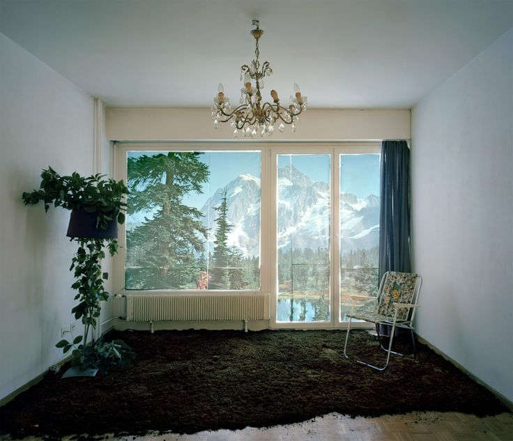 Field Of Vision: Daniel Aires Grazina