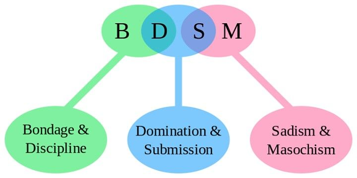 Meaning Of Bdsm 65