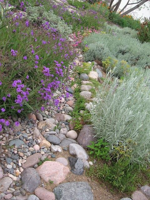 Pin by Jeannine Varley on Side yard garden ideas Pinterest