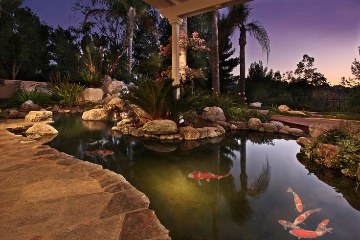 Really cool koi pond koi ponds pinterest for Cool koi ponds
