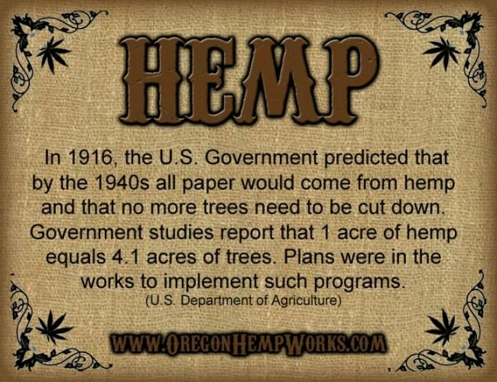 Hemp Seeds: Benefits, Nutrition, Side Effects and Facts