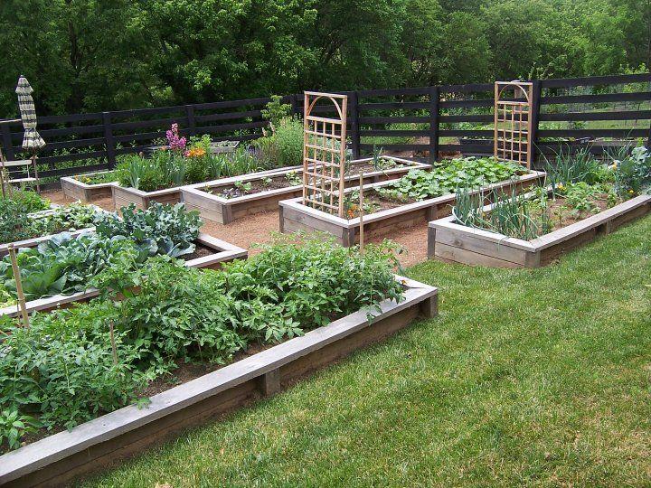 Aftergarden garden pinterest for Vegetable garden box designs