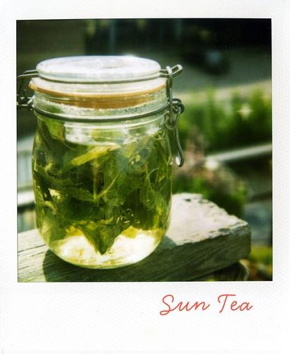 sun tea | Ra Sun tea | Pinterest