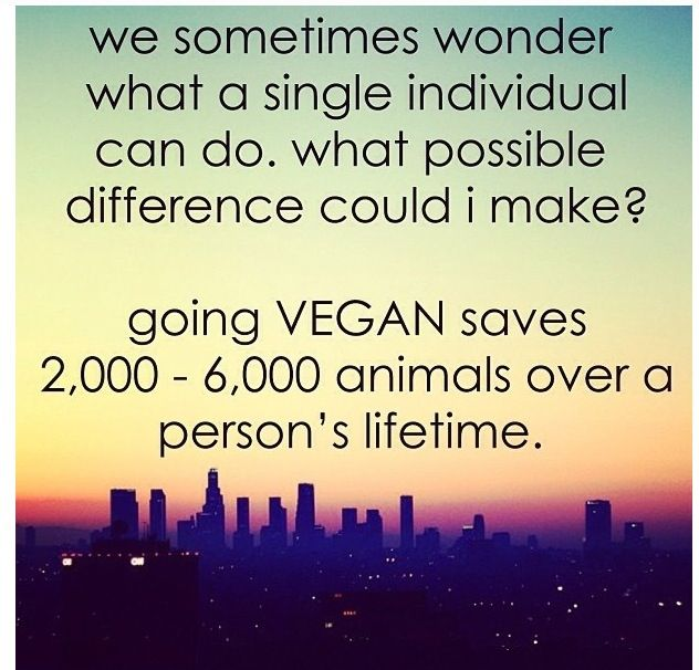 This is a big difference; Although this doesn't even mention all the positive environmental differences that going vegan can mean for the planet (saves water, cuts down on green house gas emissions, etc.)