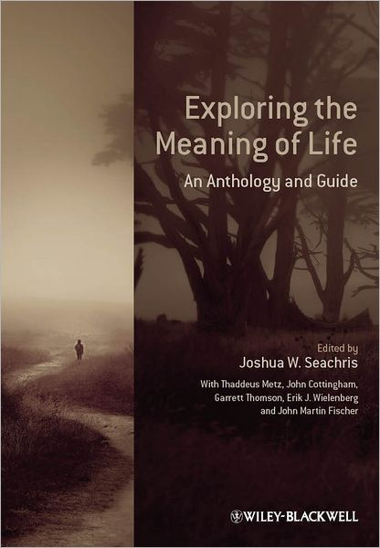 essays on meaning of life