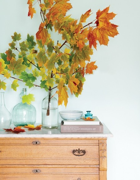 bring the autumn colors indoors.