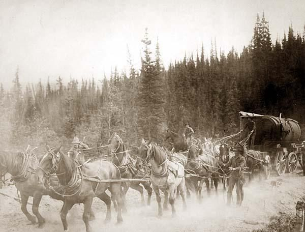 Horse team on the Overland Trail ~ circa 1900 - 1927