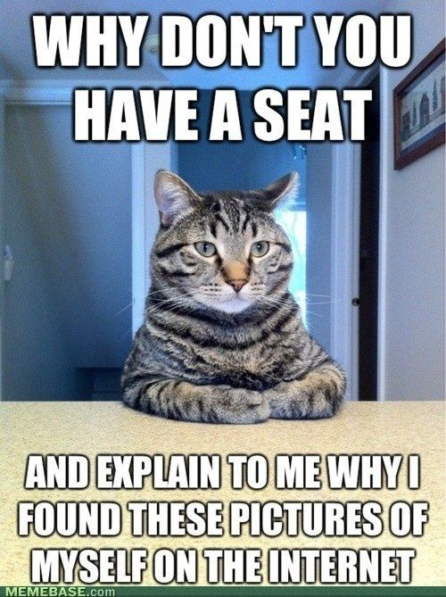 Ha ha... Mittens wants to know why there's a photo of him on the internet - LOL! For the best funny cat pics with jokes visit