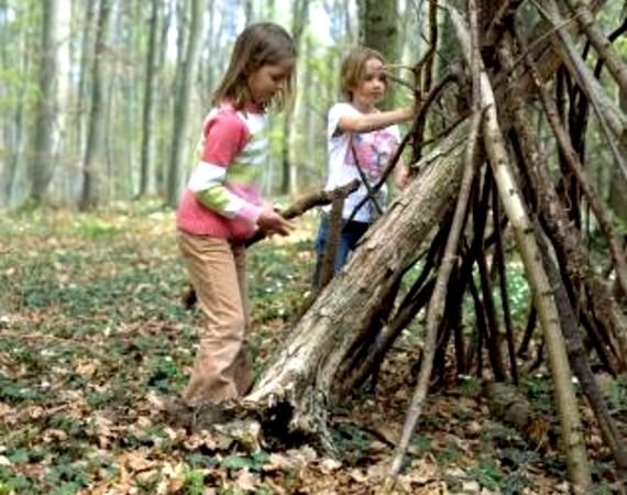 Building Forts In The Woods Remember When Pinterest