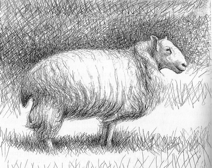 Henry Moore - sheep | Henry Moore sheep | Pinterest